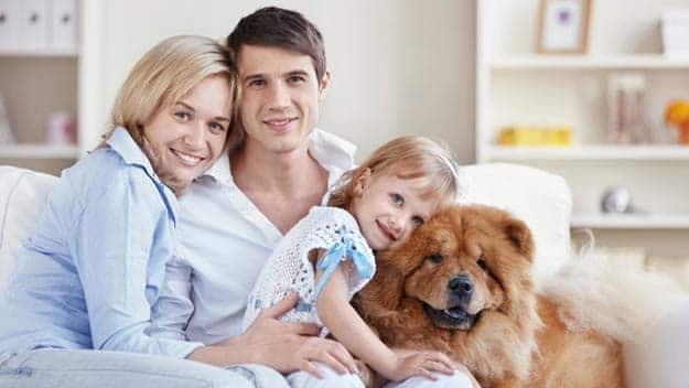 Wills & Trusts dog-young-family Direct Wills Avonmouth